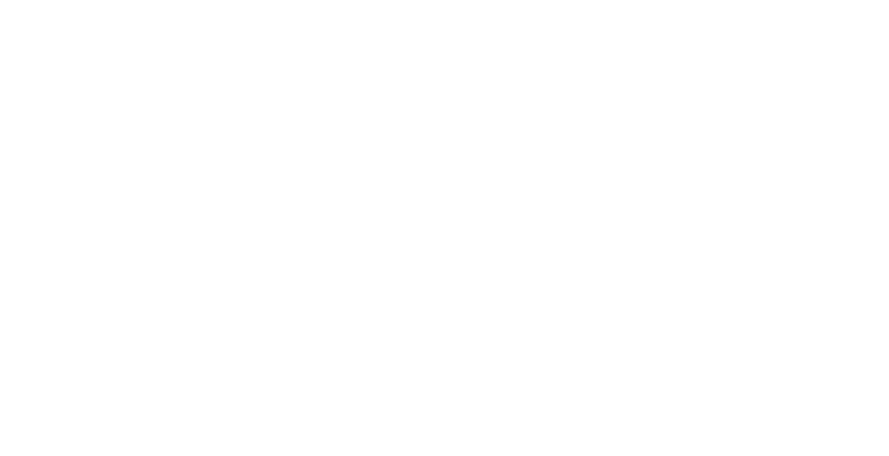 Logo The Scooter Rally